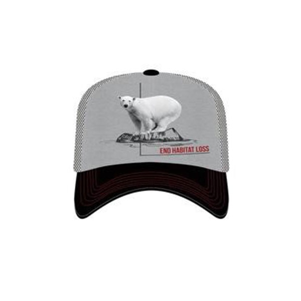 ADULT BASEBALL HAT POLAR BEAR HABITAT ASH